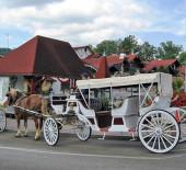 Alpine Carriage Company
