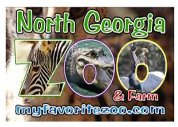 North Georgia Zoo-feature copy