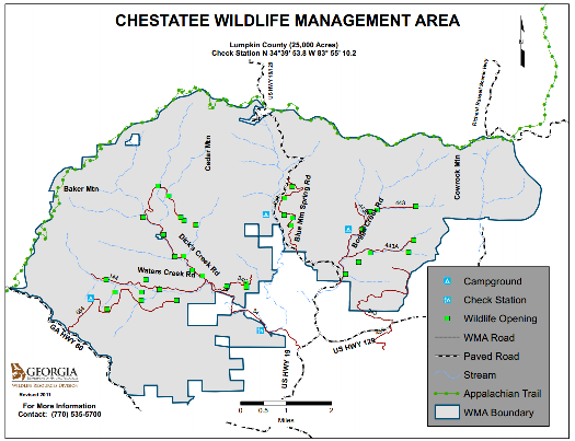 Discover Chestatee WMA